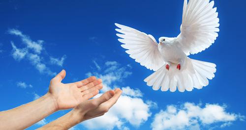 paz-el-salvador